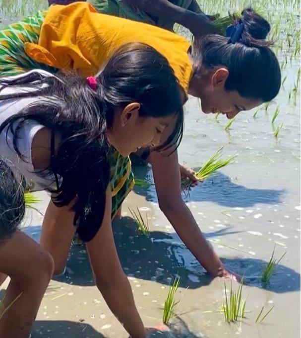 keerthi pandian agricuture
